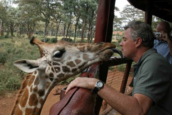 secluded safaris in africa (101)