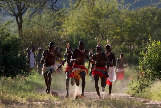 secluded safaris in africa (103)