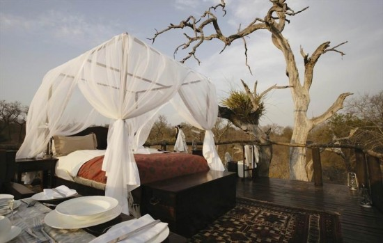 secluded safaris in africa (104)