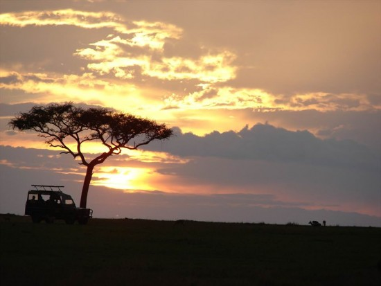 secluded safaris in africa (1)