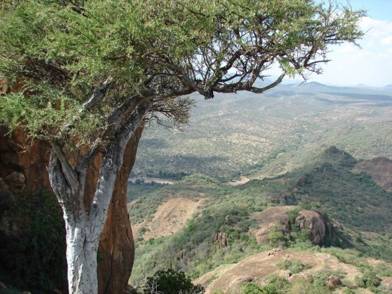 secluded safaris in africa (41)