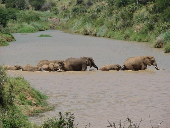 secluded safaris in africa (44)