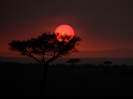 secluded safaris in africa (51)