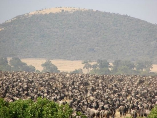 secluded safaris in africa (54)