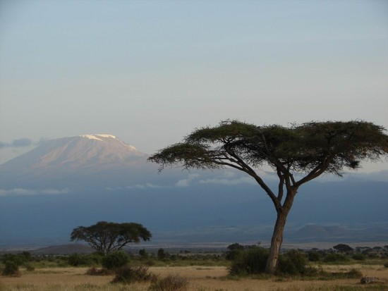 secluded safaris in africa (87)