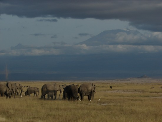 secluded_safaris_gallery_03